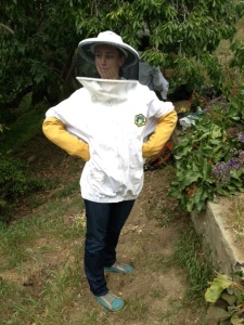 """Captain Obvious says, """"If you keep bees, you'll get stung."""""""